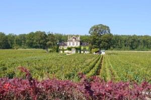 Burgundy/ Bourgogne