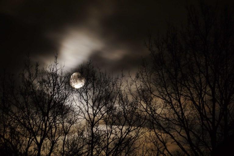 Moonstruck Again